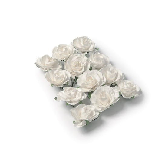 12 Jolies roses blanches